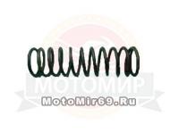 Пружина полумуфты редуктора Агро (42Т.001.01.08.005)