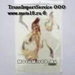 Наклейка Девушка эльф большая и маленькая (стиль фэнтези) (GPA 027) 3300