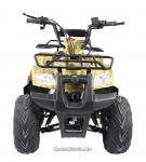 Машинокомплект (ATV) ATOMIK TT