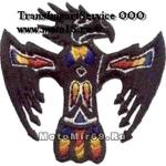 Нашивка Черный орел (этника, индийский тотем) 01491103 НАКЛЕИВАЕТСЯ УТЮГОМ