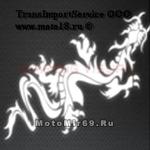 Наклейка светоотражающая Дракон китайский ползет по диагонали