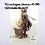 Наклейка Девушки эльфы блондинка и брюнетка (стиль фэнтези) (GPA 026) 3299