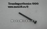 Винт М5х65 крепления глуштеля (11231481201)