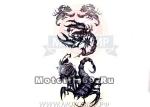 Татуировка временная (набор) YM242 (легко наносится (30 секунд), Черно-белые скорпионы с розами)
